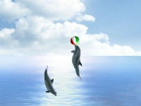 Dolphin Dreams Screensaver 5.5 screenshot