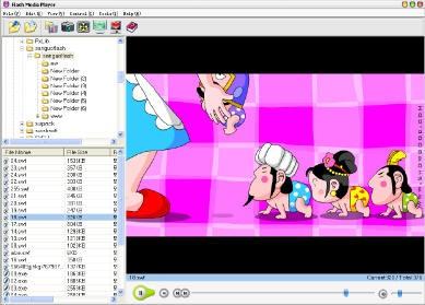 Flash Media Player 5.5 screenshot