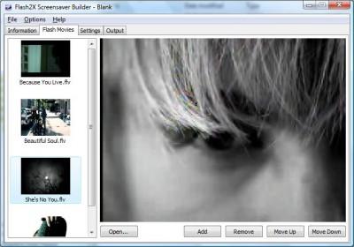 Flash2X Screensaver Builder 3.0.1 screenshot