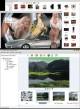 Web Photo Search 2013